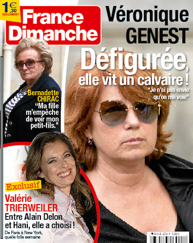 Cover 3528