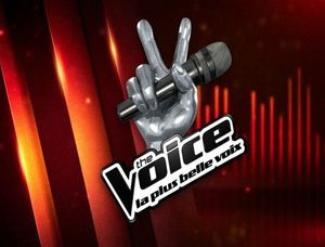 the-voice-1473860437-copie